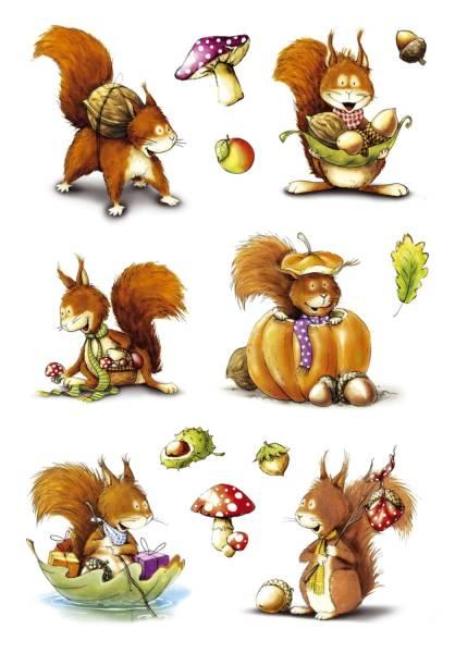 3368 Sticker DECOR Eichhörnchen