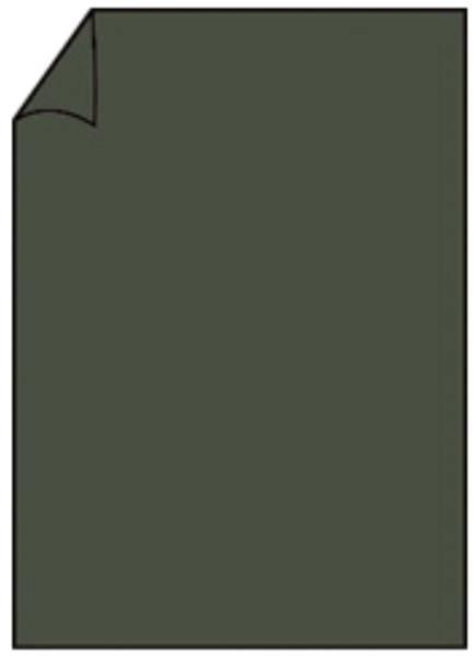 RÖSSLER Briefbogen A4 80g 10ST forest 220701571