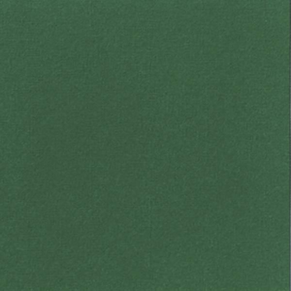 DUNI Dunilin-Serviette zu 12 d'grün 148380 40x40cm