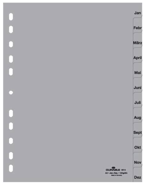 DURABLE Register Plastik Jan-Dez A4 12tlg. grau 6514 10 geprägte Taben