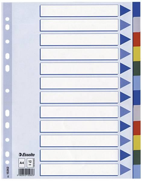Register blanko, A4, PP, 12 teilig + Deckblatt, farbig