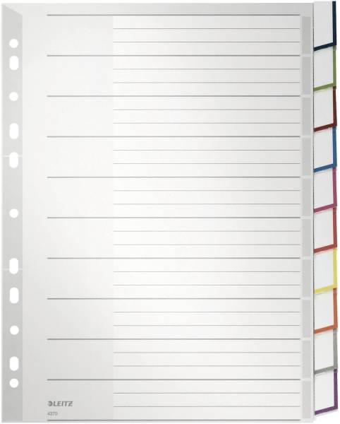 4370 Register PP, blanko, A4 Überbreite, 10 Blatt, grau