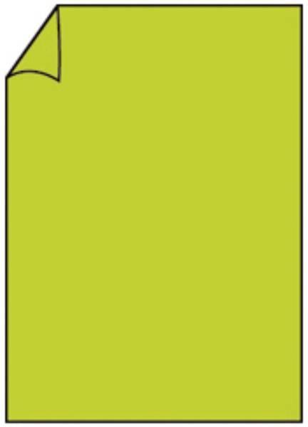 RÖSSLER Briefbogen A4 165g 10ST h'grün 220726522
