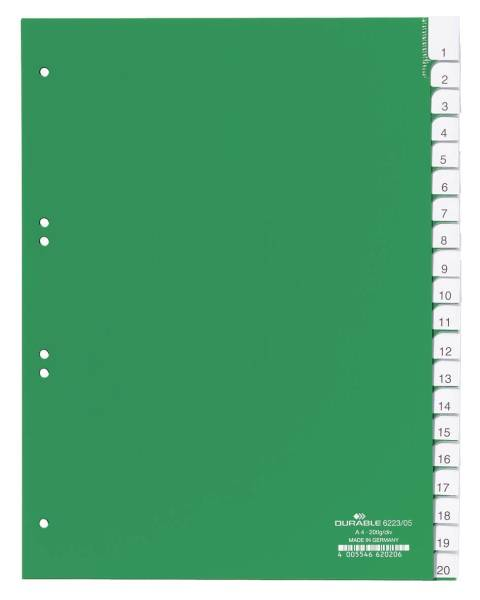 Register Plastik A4 20tlg