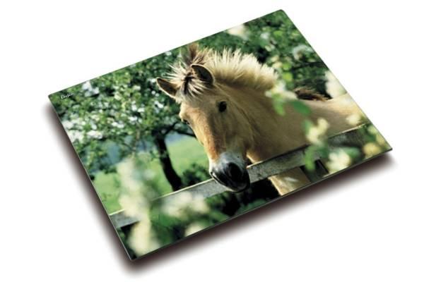 Schreibunterlage Motiv Pferd