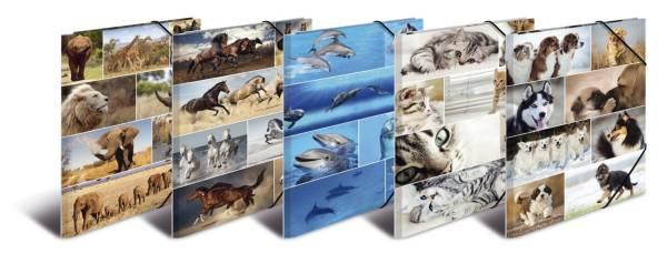 """19347 Sammelmappe """"Animals"""" A3, Karton, mit Gummizug, sortiert"""