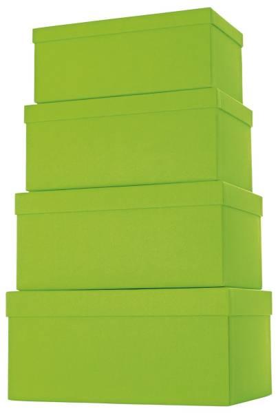 Geschenkkarton 4 tlg , hoch, hellgrün