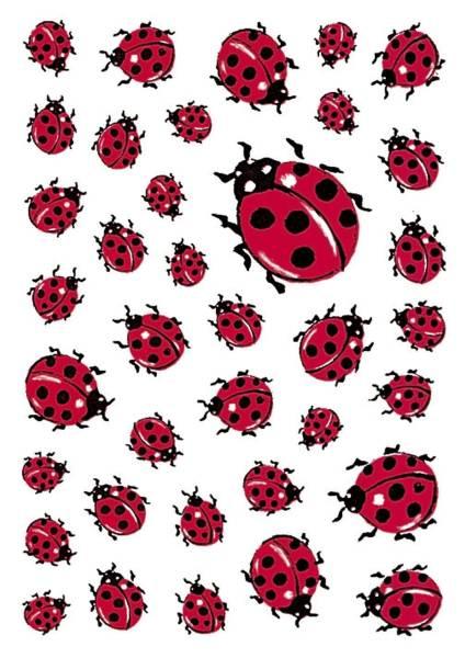 5439 Sticker DECOR Marienkäfer