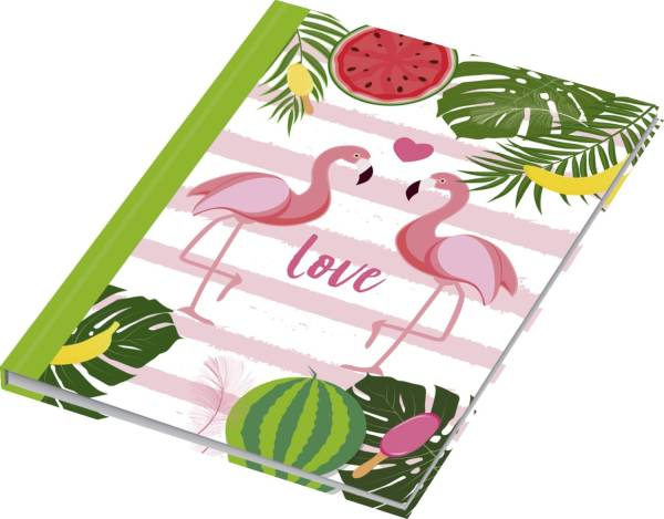 RNK Notizbuch Flamingo grün 46752 A5/96BL punktiert