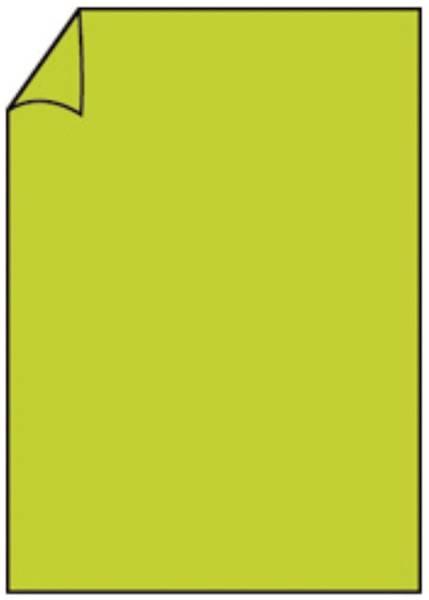 RÖSSLER Briefbogen A4 80g 10ST h'grün 220701522