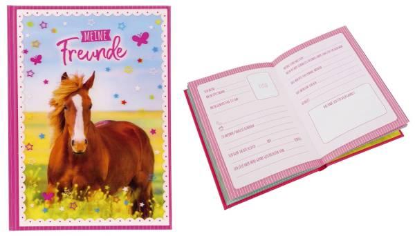 GOLDBUCH Freundebuch A5 3D Pferdeliebe 43291