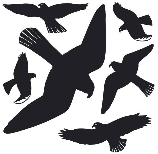 HERMA Fensterbild Warnvogel schwarz 1 Blatt 5999 wetterfeste Hartfolie