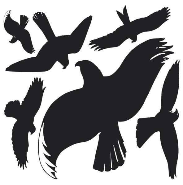 4485 Home Fensterwarnvögel Kunststoff Folie 14,5x4,5mm schwarz, transparent, 1Bogen