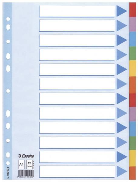 Register blanko, Karton, A4, 12 Blatt, weiß, farbige Taben