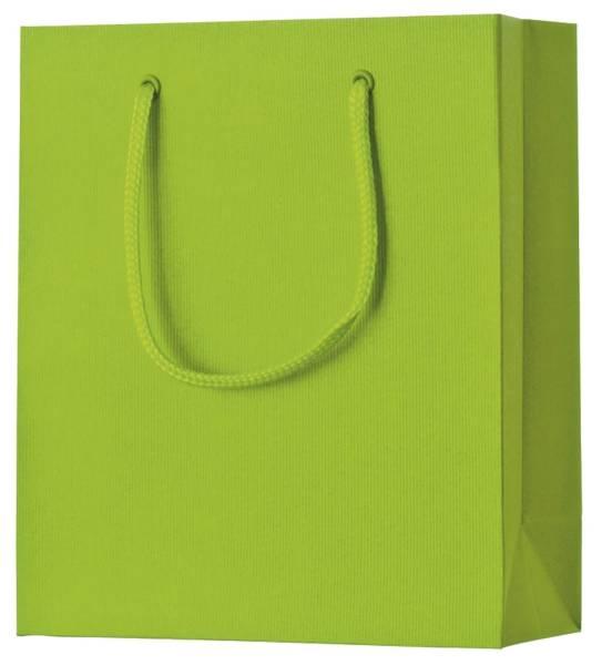 Geschenktragetasche Uni hellgrün klein